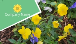 My-Flowers-Business-card